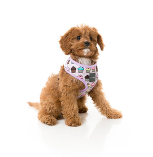 Cup Cake Dog Harness