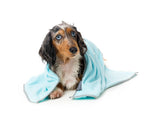 Puppies Microfiber Drying Towel Blue With Grey Trim
