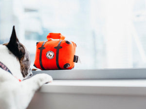 Pack & Snack Suitcase Dog Toy