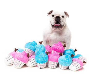 Cup Cake Dog Toy