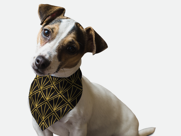 Go Retro 1920s Bandoggies® Pattern