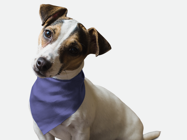 Lovely Lavender Bandoggies® Pattern