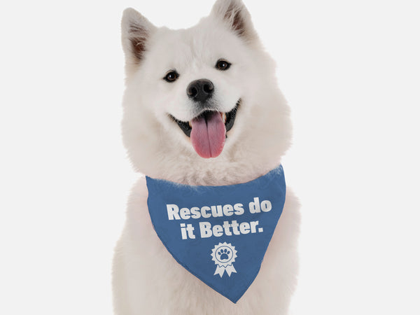 Rescues Do it Better