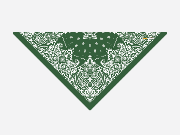 Hunter Green Paisley
