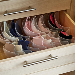 bra organized desk
