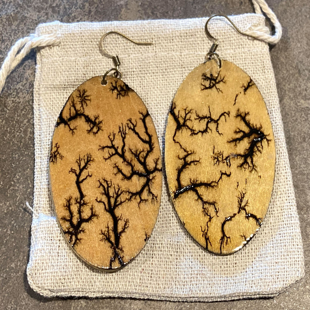 Fractal Earrings - The Pickle Patch Colorado food and gifts