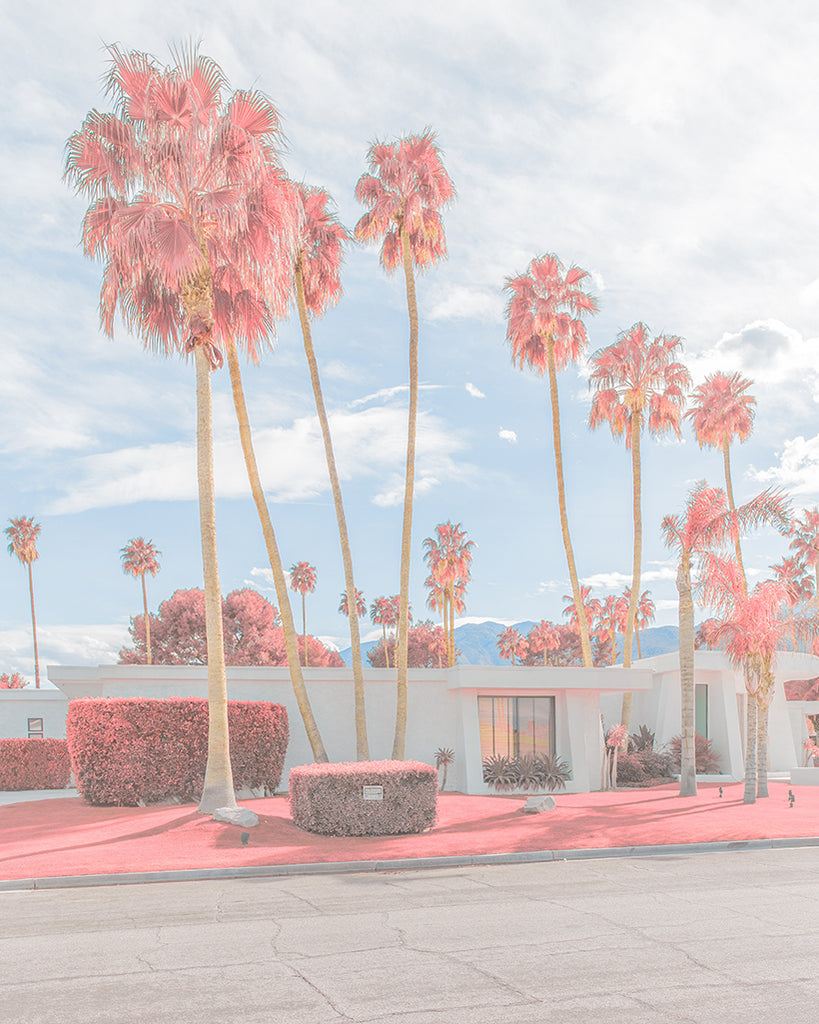 An image of palm trees and a modernist house in Palm Springs, coloured pink, by emerging Portuguese photographer Teresa Freitas.