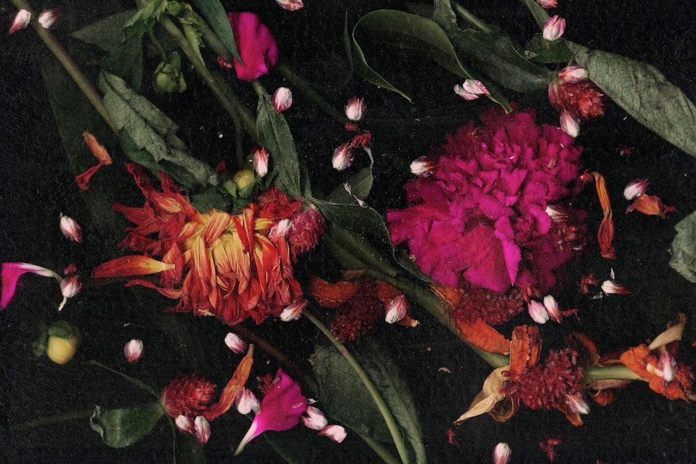 An image of a collection of brightly coloured flowers at night, taken by emerging Dutch artist Lana Prins.