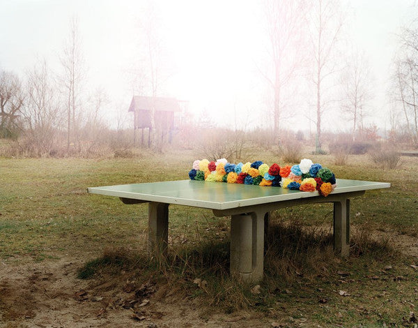 A ping pong table in a clearing, with colourful flowers draped across the middle of it, by Polish artist Oliver Schwarzwald.
