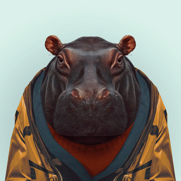 Zoo Portrait : Hippo