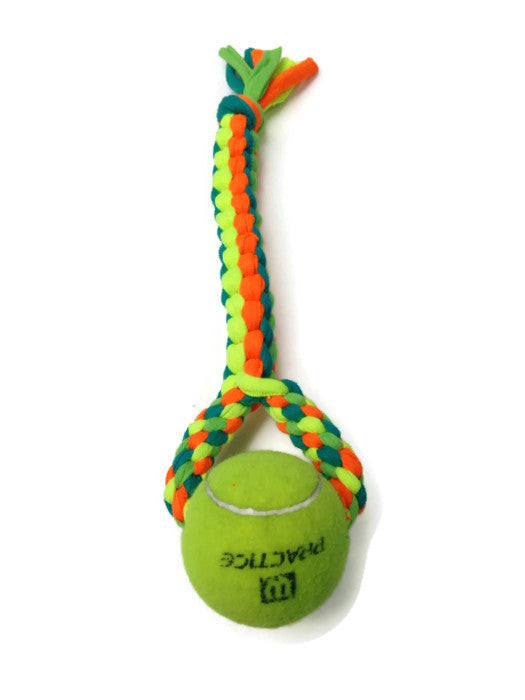 recycled dog toy