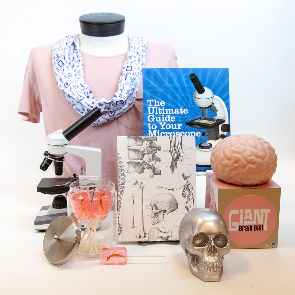 Human body gift guide group product photo.
