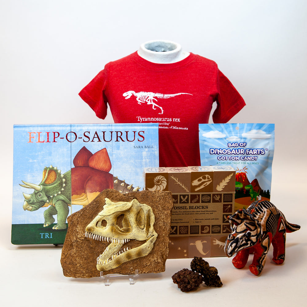 Dinosaur gift guide group product photo.