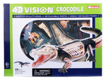Crocodile 4D Vision Anatomy Model