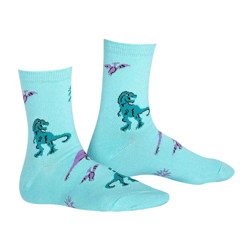 Land of the Dinosaurs Youth Socks