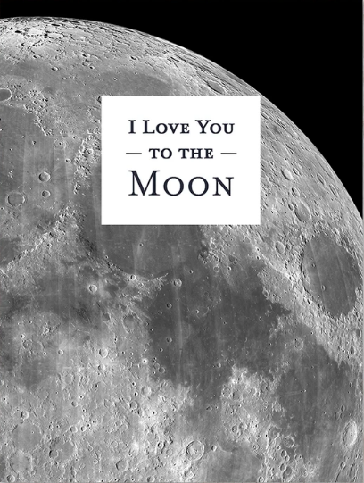 I Love You To The Moon Greeting Card