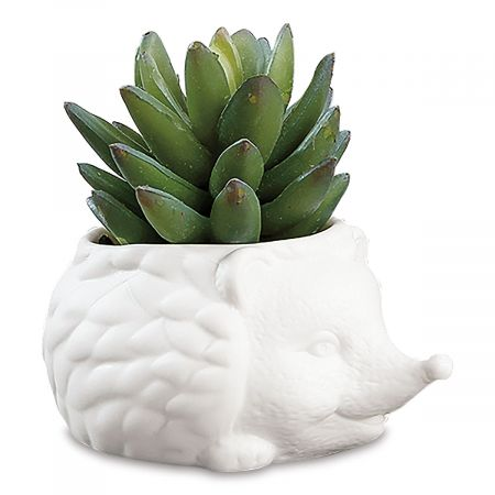 Hedgehog Planter