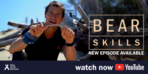 Bear Skills - New Episode