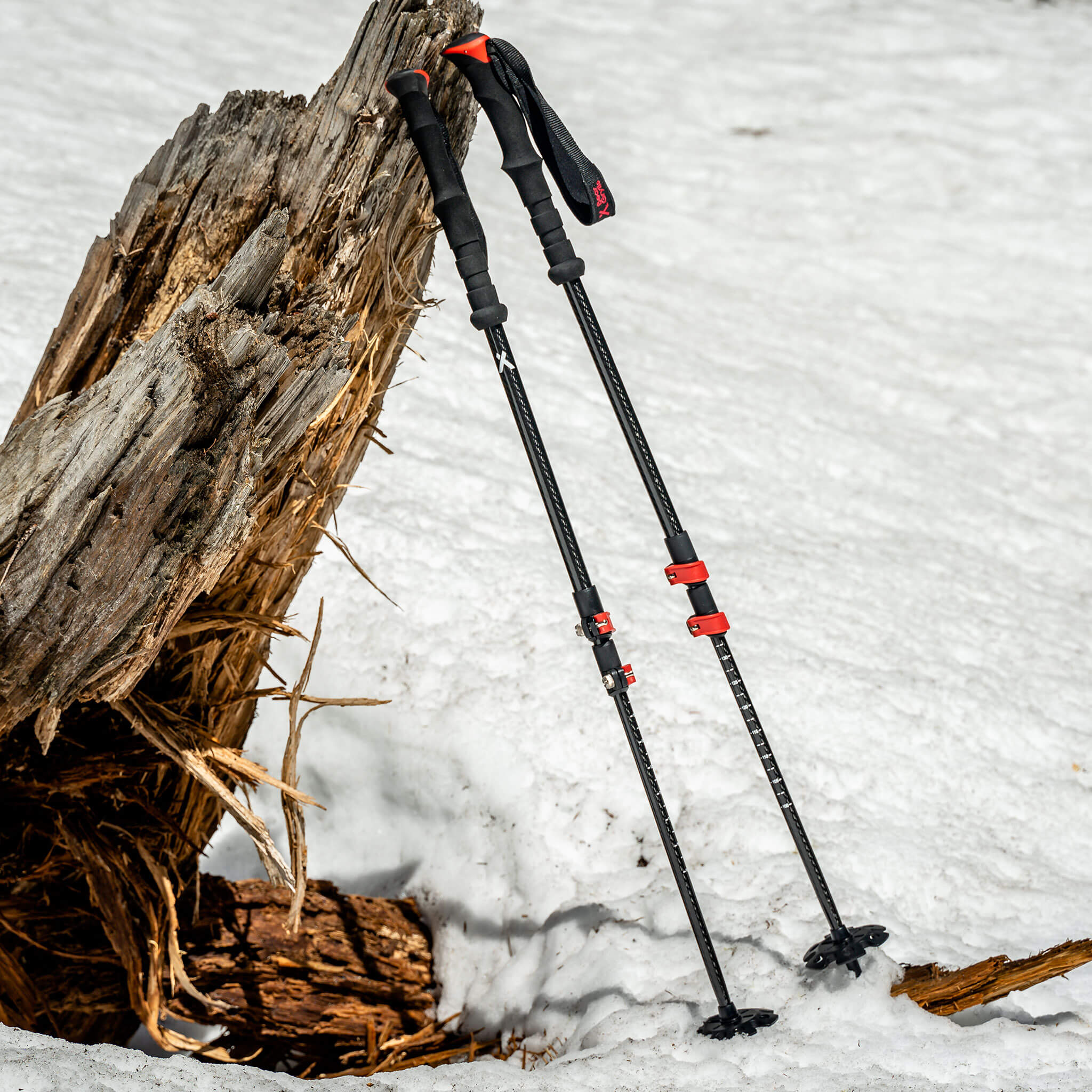 Bear Grylls Carbon Trekking poles in snow