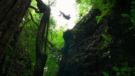 Bear Grylls Television You vs. Wild Operation Jungle Rescue, Part Two