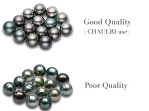 CHAULRI Authentic South Sea Tahitian Black Pearl Pendant Necklace 9-10mm Round 18K Gold Plated 925 Sterling Silver - Jewelry Gifts for Women Wife Mom Daughter