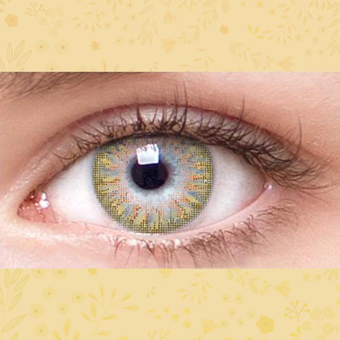 Natural firework grid-like light brown contacts (12 months) contact lenses