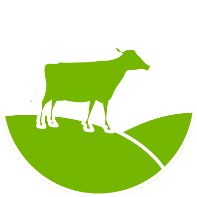 New Zealand Grass Fed Protein