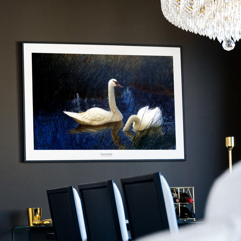 Swans in Reeds - Historly AB