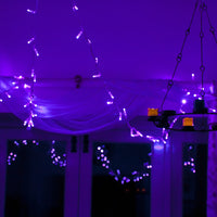 100er LED Lichterkette lila transparentes Kabel koppelbar 10m