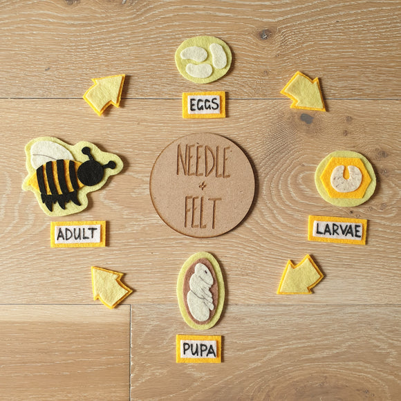 Honey Bee Life Cycle Felt Board Kit