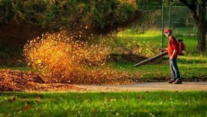 Ditch the rake for a leaf blower!