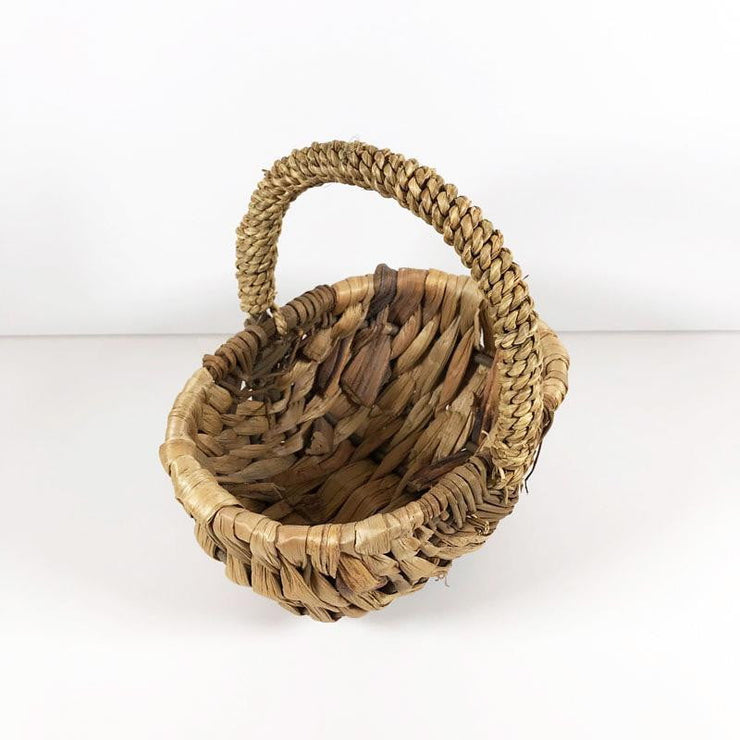 Basket Willow
