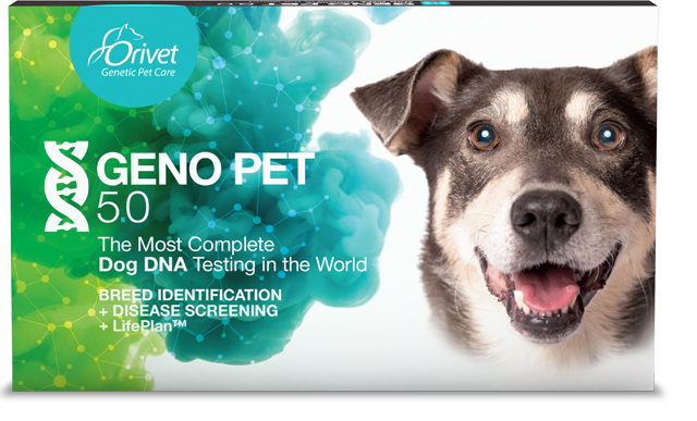GENO PET 5.0 - The most complete DNA test in the world