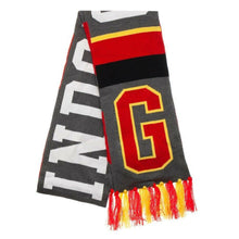 Load image into Gallery viewer, Gryffindor Sports Scarf-The Curious Emporium