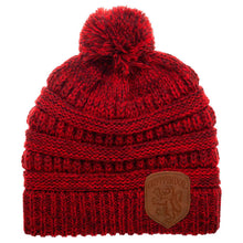 Load image into Gallery viewer, House Knitted Pom Beanie Hat (All Houses Available)-The Curious Emporium