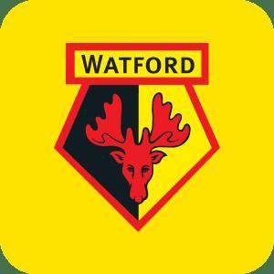 Watford FC-Poppy Stop-Personalised Gifts-Gift Shop-Gift Ideas-Homeware-Stationary