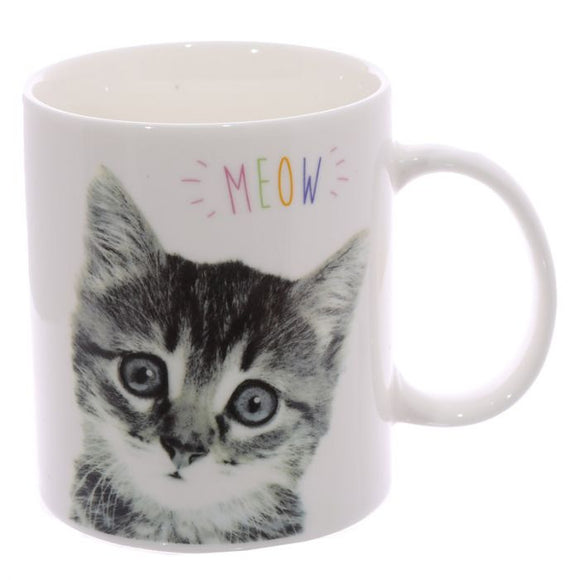 MEOW Cute Kitten New Bone China Mug-Poppy Stop-Poppy Stop