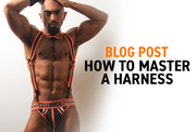 HOW TO MASTER A HARNESS
