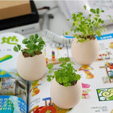Mini Eggling plant for children's day teacher's day birthday Xmas Gift