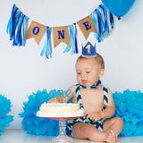 Premium Banner for baby ONE year old celebration