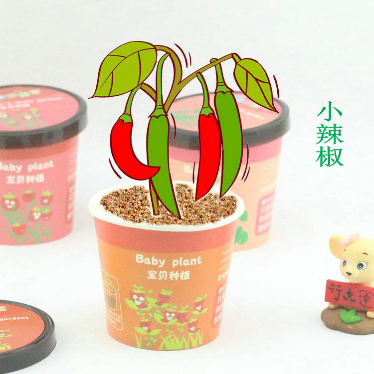 [SG Seller] - Mini plant for children's day teacher's day birthday Christmas gift