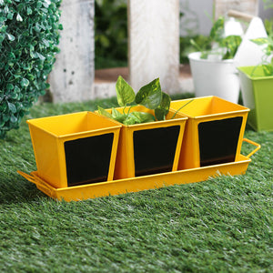 Herb Set Chalk Board Yellow Metal Planter