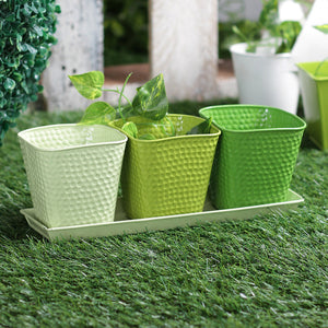 Green metal herb set planter