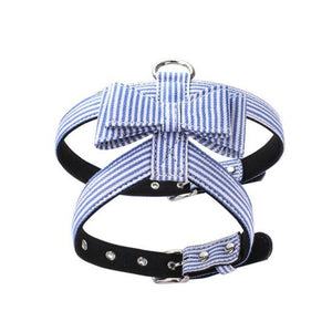Striped harness - Snout & Paws