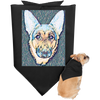 Your Pup On This Doggie Bandana
