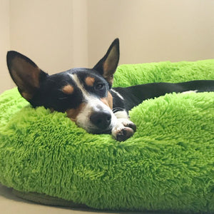 Pets Relaxing Bed - Vaghetti Deals Store