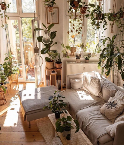 living room with hanging plants and pendants