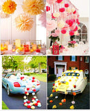 10 x 10 inch 25 cm tissue pompoms decorations accessories paper flower balls for wedding