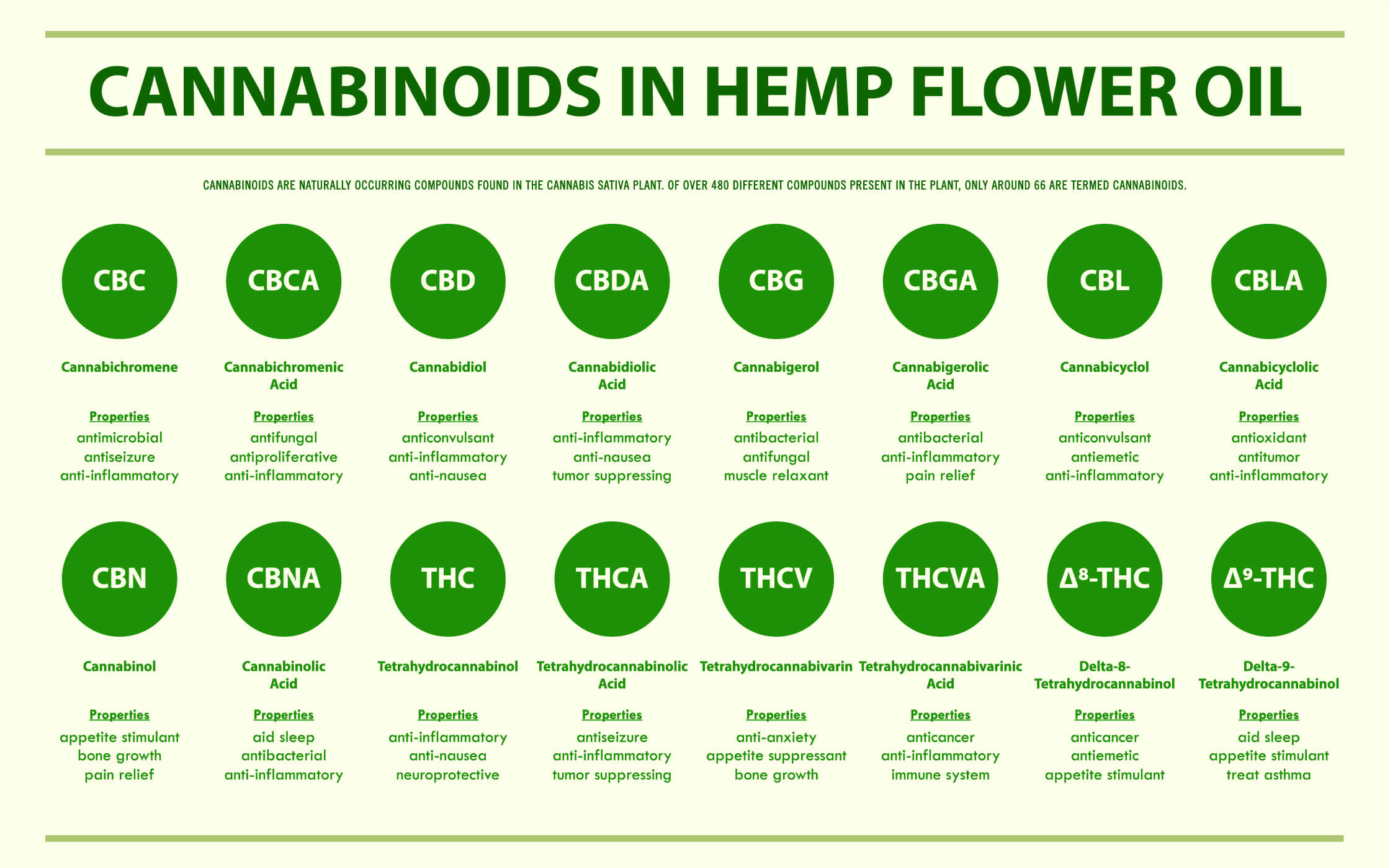 CBD OIL HEMP PLANT CANNABINOIDS