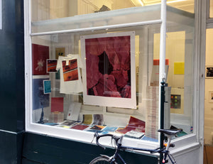 Harley Weir – Window Display, TenderBooks